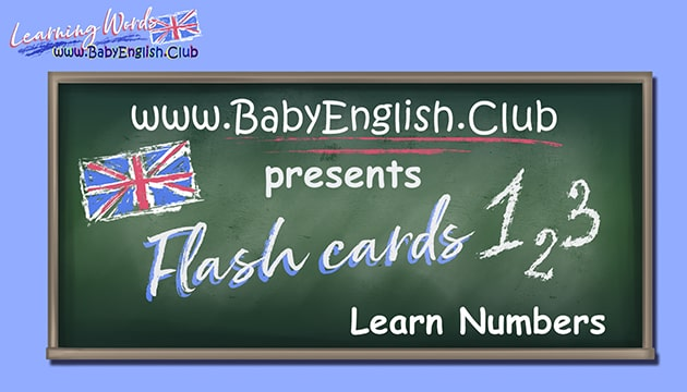 Flash Cards Learn Numbers
