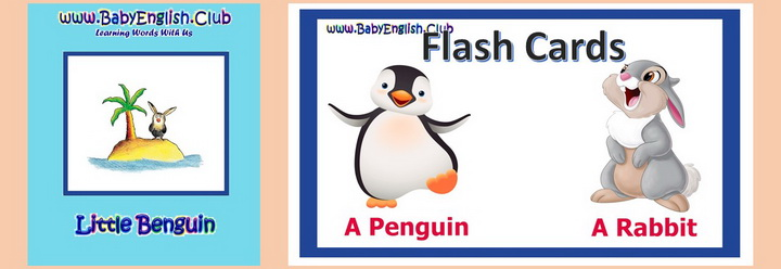 Little Benguin Flash Cards